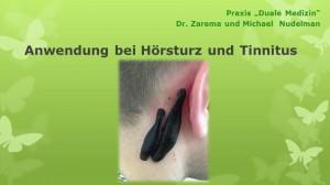 Blutegel-Therapie2